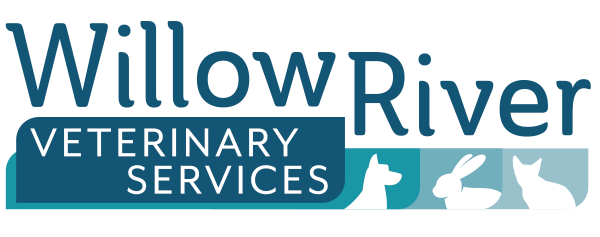 Willow River Logo